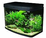 Interpet Insight Glas-Aquarium, komplettes Starter-Set Premium
