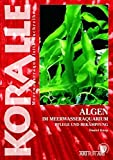 Algen im Meerwasseraquarium: Pflege und Bekämpfung (Art für Art)