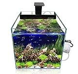GankPike Würfel LED Aquarium-Komplett-Set, 31 Liter inklusive LED-Beleuchtung, Innenfilter (Biochemische Schwämme und Keramikfilterringe), Wasserpumpe und Luftpumpe