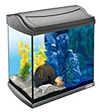 Tetra AquaArt LED Aquarium-Komplett-Set 30 Liter - inklusive LED-Beleuchtung, Tag- und Nachtlichtschaltung und EasyCrystal Innenfilter, ideal für Krebse und Garnelen, Farbe: Anthrazit